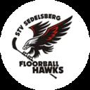 Logo STV Sedelsberg