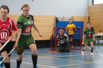 Spielerinnen und Torfrau auf dem Floorball-Kleinfeld